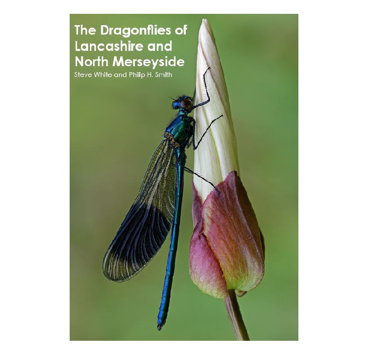 New Atlas – Dragonflies of Lancashire and North Merseyside