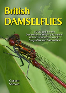 DVD: British Damselflies